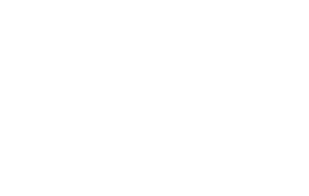 Allies Logo White