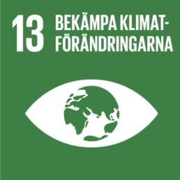 Agenda 2030 – Mål 13
