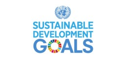 Sustainable Development Goals Logo